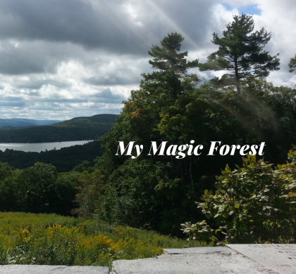My Magic Forest!